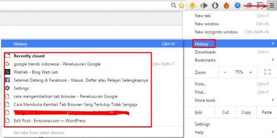 Mengembalikan Tab Browser Yang Baru Tertutup Tanpa Buka History