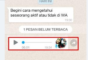 Cara Jitu Mengetahui Pesan WhatsApp Sudah Dibaca Atau Belum